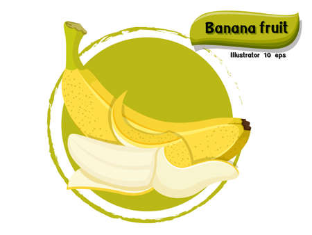 Vector Banana fruit isolated on color background,illustrator 10 eps