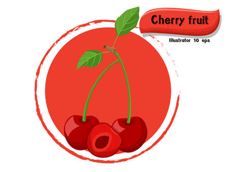 Vector Cherry fruit isolated on color background,illustrator 10 eps