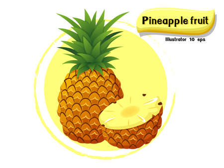 Vector Pineapple fruit isolated on color background,illustrator 10 eps
