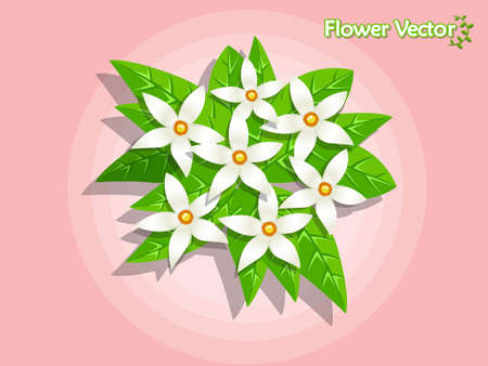 Spring beautiful flowers on colored background. Summer and decoration element vector illustration.