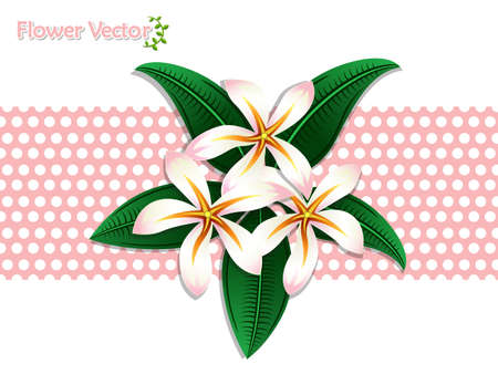 Fresh spring beautiful color flowers on background. Vector illustration. Gift and decorative element. Floral and garden.