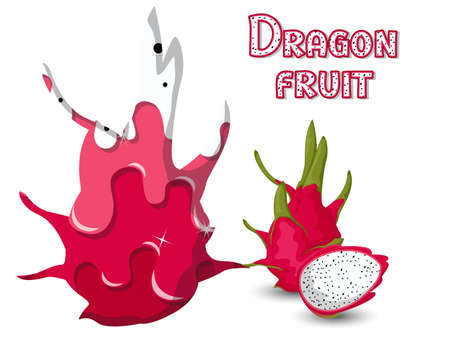 Dragon fruit silhouette template melted flowing consisting of dark tasty sweet liquid. Abstract background. Vector illustration