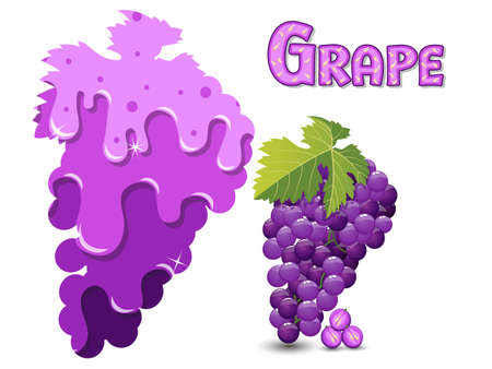 Grape fruit silhouette template melted flowing consisting of dark tasty sweet liquid. Abstract background. Vector illustration 矢量图像