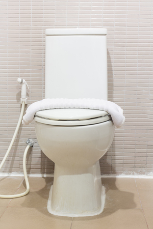 loo: toilet bowl in a bathroom Stock Photo