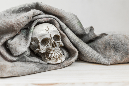 preppy: still life. The skull was covered with a cloth on wood background