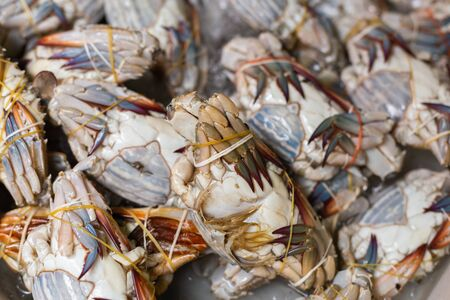 Raw crabs for sale in the market. Standard-Bild - 134095163