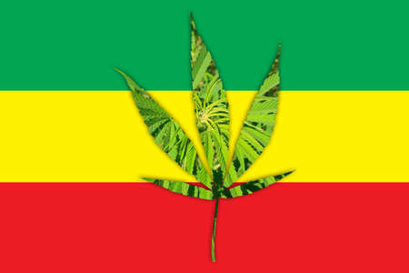 dabs: Marijuana Bud on Canopy of Indoor Cannabis Plants with Flat Vintage Style