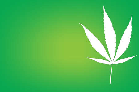 Cannabis leaf on green background