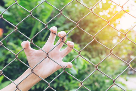 The boys hand hand caught an iron cage in Places of Detention to await freedom. Light Fair