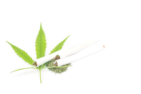 spliff: Marijuana rolls isolated on white background