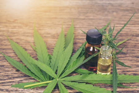 Medical Cannabis ( Marijuana ) oil Standard-Bild
