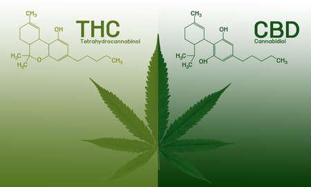 Image cannabis of the formula CBD-THC
