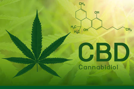 Image cannabis of the formula CBD Banque d'images