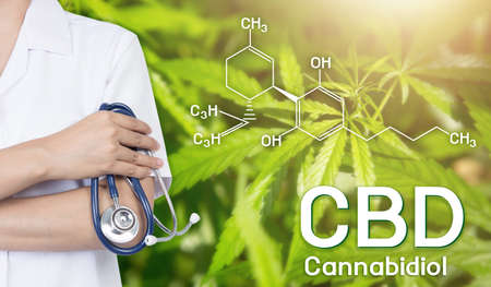 Doctor Image cannabis of the formula CBD. Stock Photo