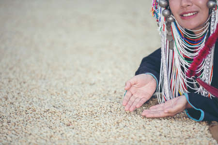 Akha women smiled and admired the coffee that was dried in the house, the hill tribe coffee products of northern Thailand. Banco de Imagens