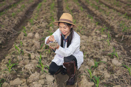 Female researchers examined soil with a modern concept tablet.