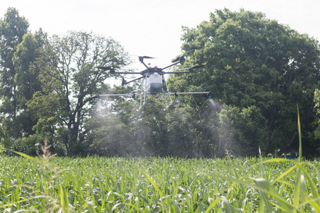 agriculture drone sprayer for smart farm fly on corn field