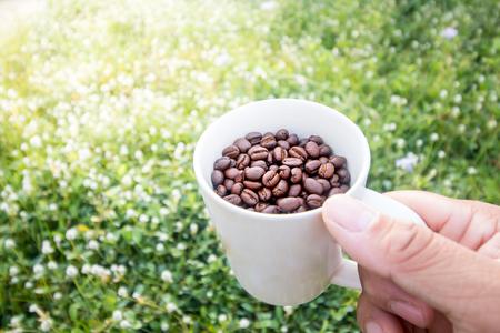 coffee bean in cup on grass field Foto de archivo
