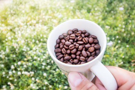 coffee bean in cup and hand on grass field