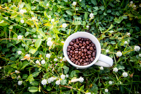 coffee bean in cup on grass field top view