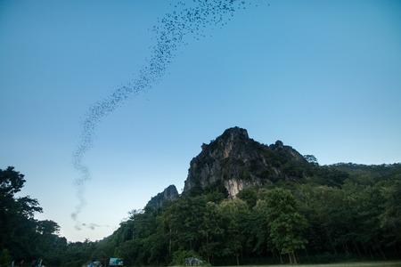 Bats fly out cave to sky at sukhothai thailand Foto de archivo