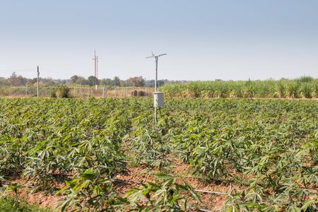 agriculture and Internet of things ,smart farmer