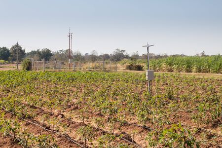 agriculture and Internet of things , smart farmer