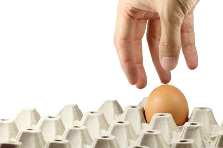 Hand picking egg in paper tray photo