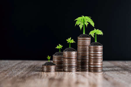 Pile of coins is stacked in a graph shape with sapling of a growing tree for money saving ideas and financial planning insurance.