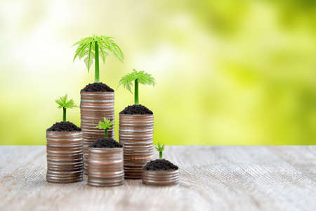 Pile of coins is stacked in a graph shape with sapling of a growing tree for money saving ideas and financial planning insurance. Standard-Bild - 157164076