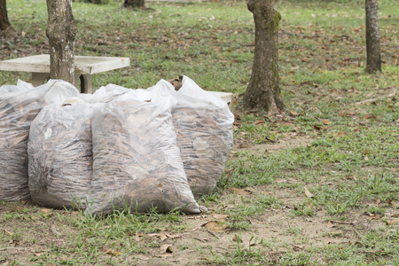 Autumn cleaning leaves,Pile of full white garbage bags on the grass in the park,leaves in bag garbage