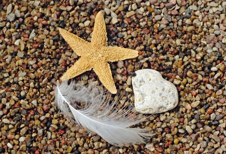 Starfish at a beach Stock Photo - 1354507