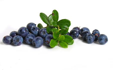 bilberries: Scattering of bilberries on white background                            Stock Photo
