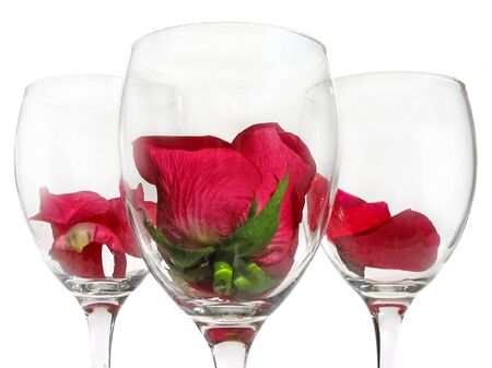 roseleaf: Wineglass with rose flower on white background
