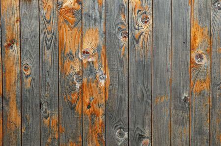 old macro: Beautiful valla de madera de textura close-up