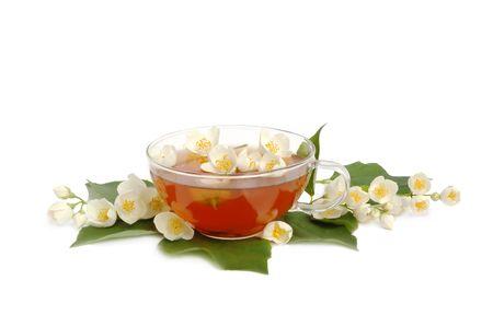 jessamine: Gelsomino tè verde con fiori freschi di gelsomino.