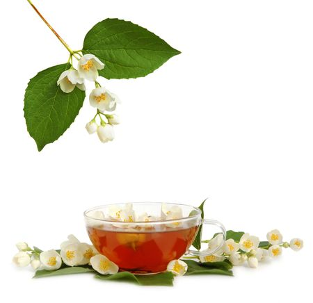 Green jasmine tea with fresh jasmine flowers. Stock Photo - 3237800