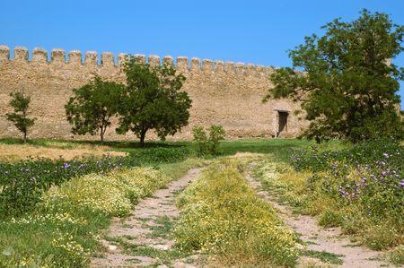 ramparts: Medieval castle near Odessa, Ukraine, Belgorod Dnestrovsky.  meadow in front of wall.