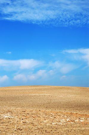 tillage: Summer tillage field, end of summer agricultural landscape