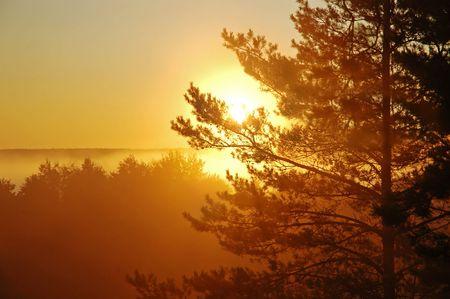 Early mist morning and beautiful sunrise photo