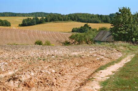 tillage: Summer tillage field, end of summer agricultural