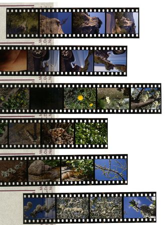 A 35mm contact sheets strip of slide film with my photos. I am the author of all the images contained in this image. photo