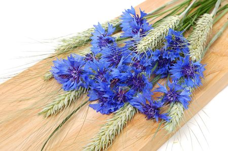 Bunch of cornflowers and green cereals on a wood board photo