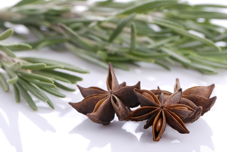 Bunch of rosemary and anise stars close-up on white background Stock Photo - 8895273