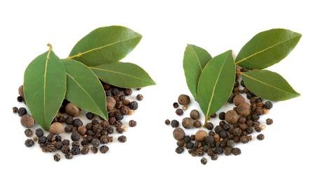 hojas secas: Hojas de laurel frescas y granos de pimienta negras sobre fondo blanco
