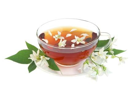 hojas de te: Hojas de t� con flores de jazm�n frescas y Copa de cristal sobre fondo blanco