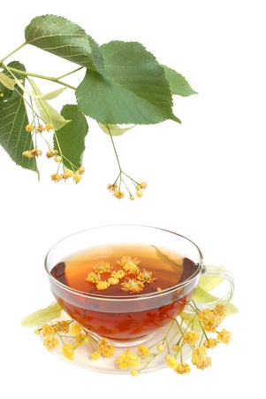 Linden tea with fresh linden flowers on a white background photo