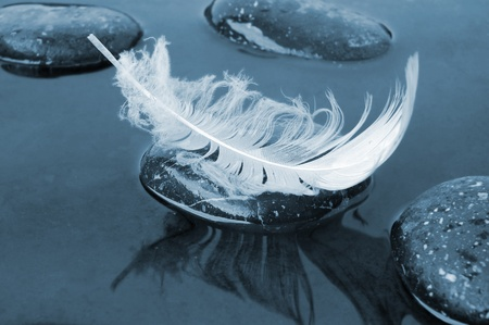 White feather on stone on black water background Stock Photo