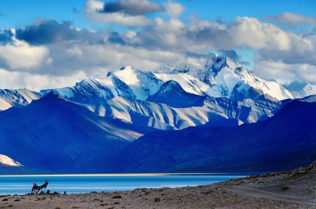 himalayas: A view of Himalayas mountains with Tso Moriri lake in the foreground in Ladakh, India, altitude 4600 m Stock Photo