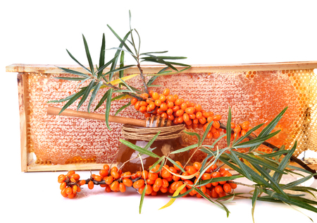 Honey in honeycomb with Sea buckthorn berries branch isilated on white background